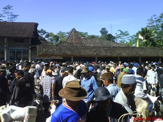 Pasar Kambing Etawa