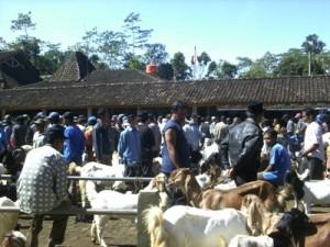 Pasar Kambing Kaligesing